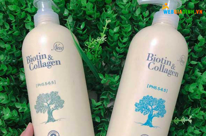 Dầu gội Biotin Collagen