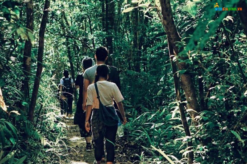 trekking vườn quốc gia bạch mã